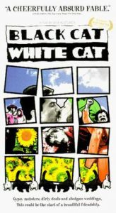 Wednesday Double Feature - The Magical Realism of Emir Kusturica - Black Cat, White Cat